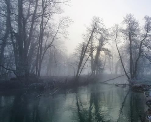 Huchenfischen Slowenien